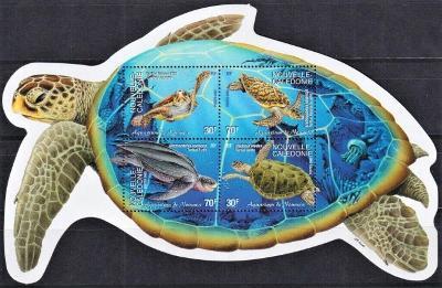 Mořská fauna - Nová Kaledonie 2002