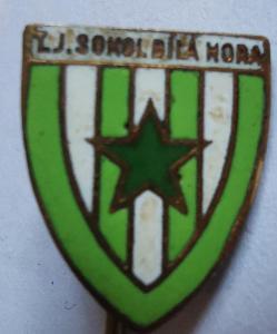 Odznak TJ Sokol Bílá Hora