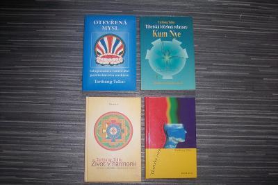Buddhismus - Tarthang tulku
