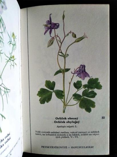 DEYL, M. / HÍSEK, K. Naše květiny / I+II. DÍL - Knihy