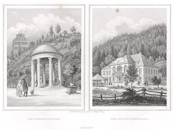 Karlovy Vary Theresienbrunn, oceloryt, 1842 - Antikvariát