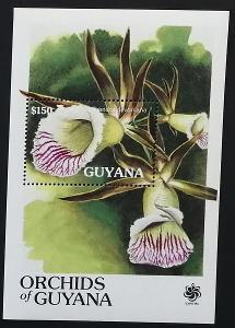 Guyana 1990 Bl.112 10€ Orchideje Jižní Ameriky, Galeandra devoniana