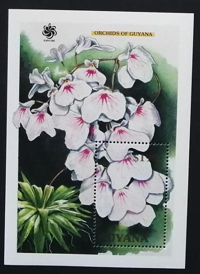 Guyana 1990 Bl.113 10€ Orchideje Jižní Ameriky, lonopsis utricularioid - Filatelie