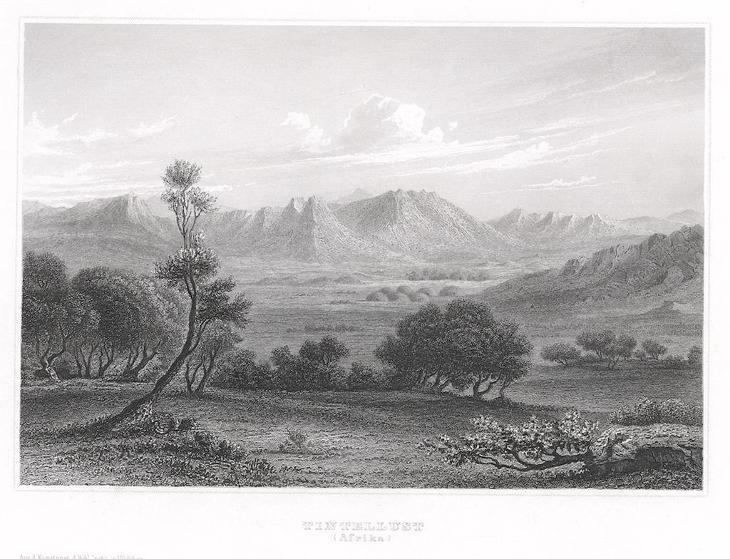 Tintellust, Meyer, oceloryt, 1850 - Antikvariát
