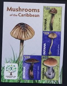 Guyana 2011 Mi.8228-1 10€ Houby Jižní Ameriky, flora Karibiku