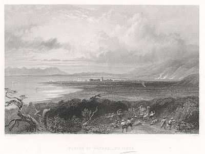 Issus, Fischer oceloryt, 1838