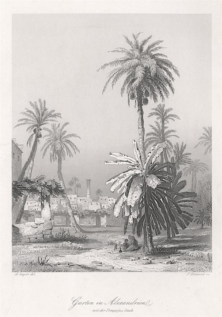 Alexandrie, Payne, oceloryt 1860 - Antikvariát