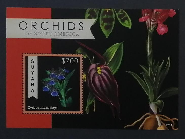 Guyana 2012 Bl.853 7,5€ Orchideje Jižní Ameriky, Zygopetalum clayi - Filatelie