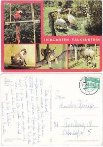 Německo - ZOO Falkenstein