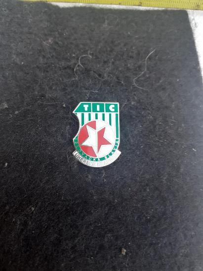 Odznak SLOVÁCKÁ SLÁVIA UHERSKÉ HRADIŠTĚ  - Faleristika