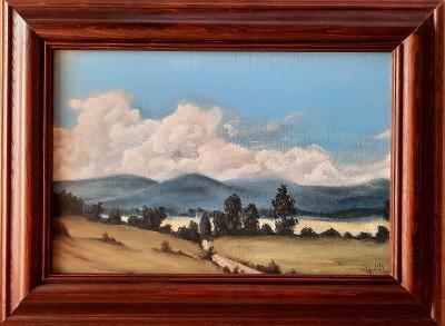 Letní Krajinou - Malba Akrylem 28x38 cm
