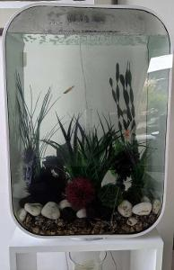 Designové akvárium BIORB Life