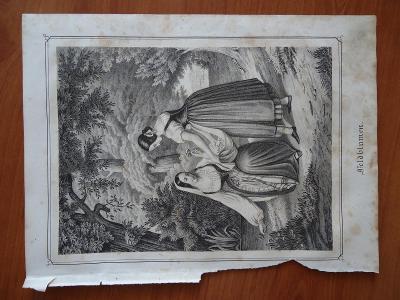Feldblumen......vel. 19,5 x 26 cm....ocelorytina , cca 1880