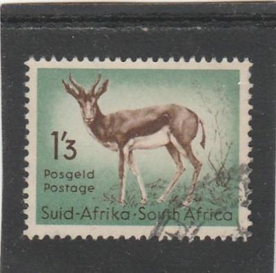 Jižní Afrika - na doplnění - fauna