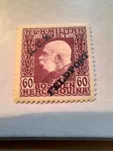 ANK 1915 Polní pošta Bosna H. č 15 * hledané od korunky!!!!
