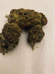 CBD květy SKYWALKER indoor (12% CBD) / 50 gramů