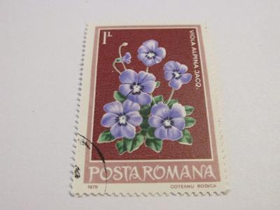 Známky Rumunsko 1979, Květiny