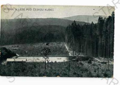 Česká Kubice Domažlice rybník v lese