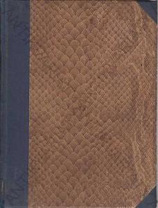 Elektřina v průmyslu a v domácnosti V. Kurz 1898