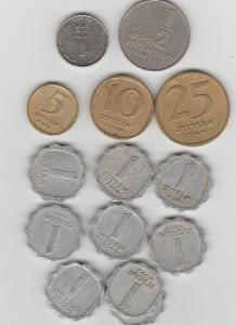 mince izrael