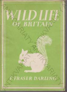 Wild life of Britain / divoký život v Británii
