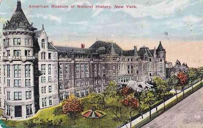NEW YORK - MUSEUM - 395-SQ18