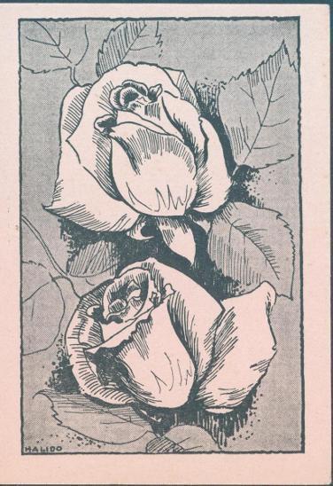 14B2 Německo- lístek, polní pošta II. světová válka , neprošlé