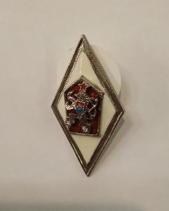 Odznak pro absolventy Vojenské vysoké školy - ČSSR - stříbřitý lem