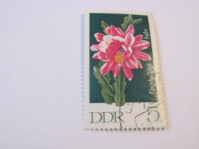 Prodávám známky DDR 1970, Kaktusy