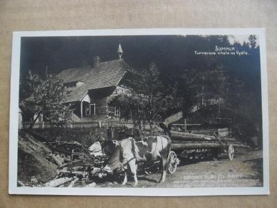 Turnerova chata Sušice Klatovy Šumava Český Krumlov krávy v potahu
