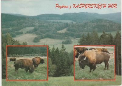 sskr4/ VF neprošla- kašperskych hor