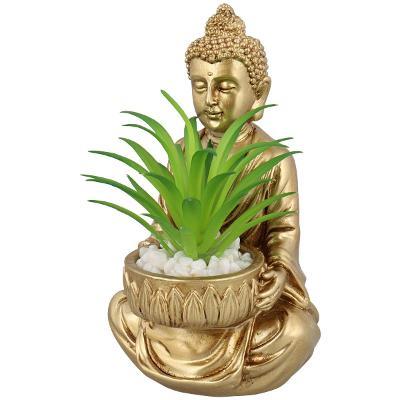 Nádherná soška buddhy se sukulentem