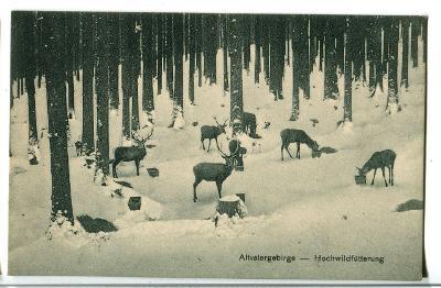 Obora zvířata, Jeseníky, Šumperk Bruntál