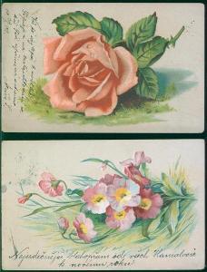 25A597 Srdečné  přání - květy