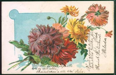 25A785 Přání - květiny
