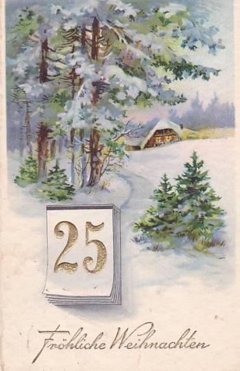 VÁNOČNÍ KRAJINA - TLAČENÁ POHLEDNICE - 21-AY70
