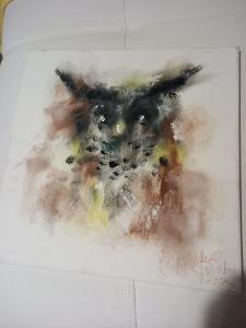 Obraz sova na plátně 40x40cm podpis