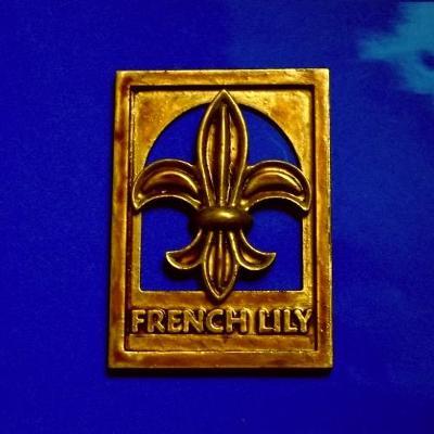 Heraldická Plaketa Velká Francouzská LiLie 108x75*12 mm ,medaile