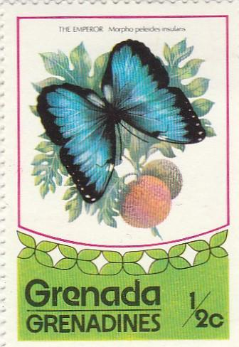 Grenada - Grenadiny - na doplnění - fauna