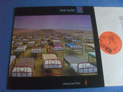 LP Pink Floyd - A Momentary Lapse of Reason