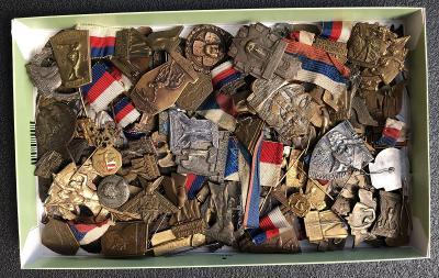 konvolut sbírka sokolských odznaků sokol tyrš 0,8 Kg