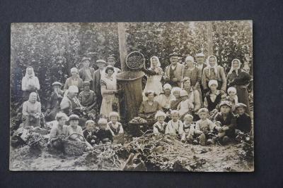 Pohlednice sběr stará fotografie chmelařství pivo RAKOVNÍK česání chme
