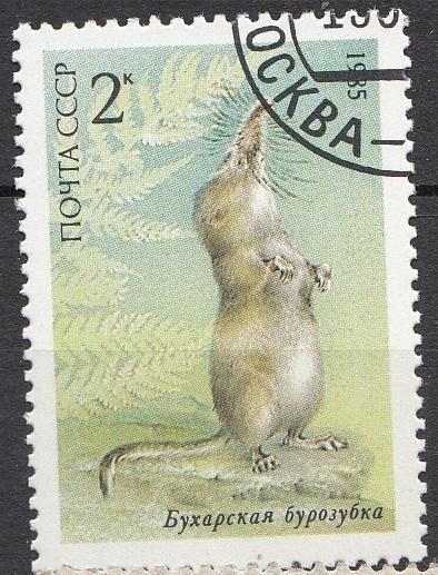 SSSR-1985