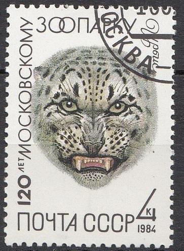 SSSR-1984
