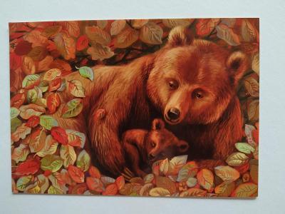 Pohlednice Medvěd Medvídě Medvídek Podzim Listí CIZINA POPSANÁ