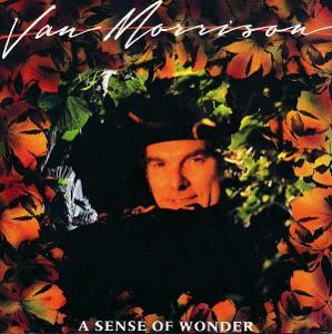 Van Morrison – A Sense Of Wonder CD 1998 jako nove NM