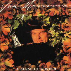 Van Morrison – A Sense Of Wonder CD 2008 Remastered Bonus jako nove NM