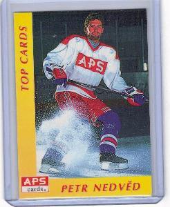 1995-96 Czech APS Extraliga #TOP CARDS Petr Nedvěd RARITA !!!