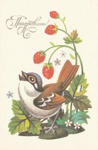 Ptáček oslava narozenin