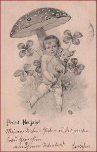 Nový rok * prasátko, děti, muchomůrka, houby, gratulační * M2661